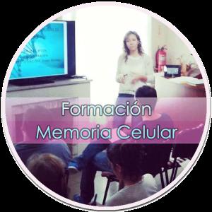 Formación Método Barrido y Reprogramación de la Memoria Celular