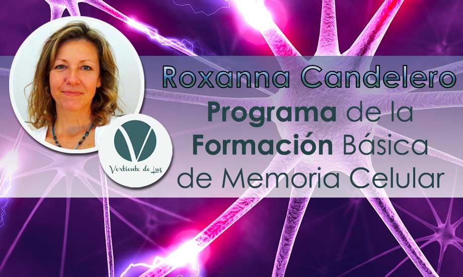 """Formación Básica de """"Barrido y Reprogramación de la Memoria Celular"""""""