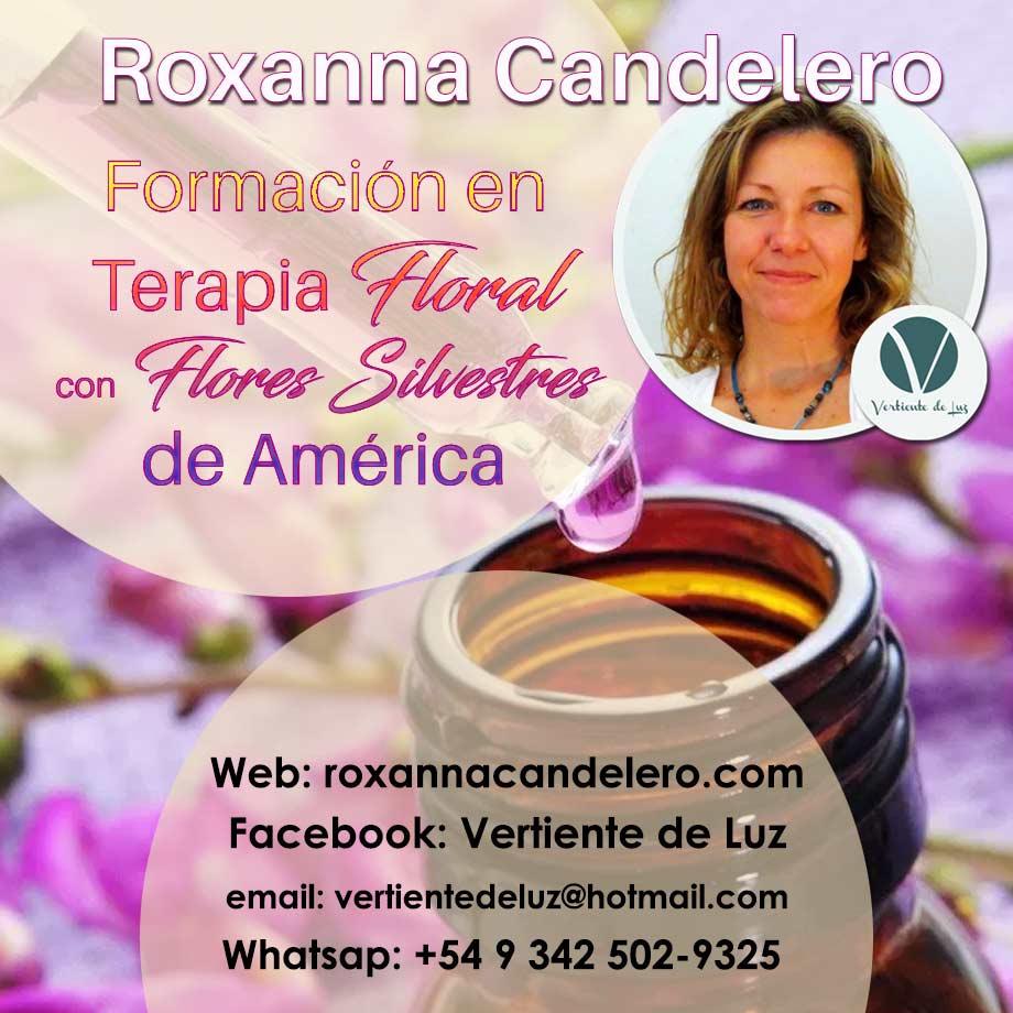 Formación Terapeuta Floral en Flores Silvestres de América